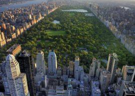 Voyager en famille, les activités à faire à New york