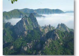 La Corée, une destination idéale pour réaliser un voyage inoubliable